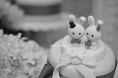 rabbit and bunny Wedding Cake Topper (charles fukuyama) Tags: wedding rabbit conejo lapin kaninchen coniglio cakedecoration  weddingcaketopper cutebunny  customcaketopper animalscaketopper rabbitcaketopper kikuike