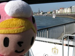 Pity in Gloomy in Düsseldorf (I) (dididumm) Tags: sunshine river germany cosplay bluesky plushie gloomybear nrw grizzly fluss düsseldorf rhine rhein blauerhimmel pity softtoy plushtoy selfie sonnenschein plüschtier stofftier rheinuferpromenade