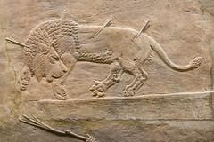 DSCF7007.jpg (Darren and Brad) Tags: england london thebritishmuseum assyria assyrian sportofkings ashurbanipal lionhunting royallionhunts