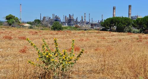 Refineries of Megara Hyblaea