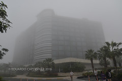 Viajando con Oriflame a Abu Dhabi (eduardo.capdeville) Tags: dubai abudhabi acuario capdeville oriflame cureo conferenciadiamante