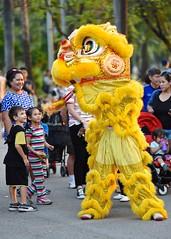 There be dragons (jeremyhughes) Tags: yellow children thailand nikon dragon bangkok culture chinesenewyear dancer newyear celebration d750 nikkor lunarnewyear cultural dragondance mythical lumpinipark 80200mmf28ded