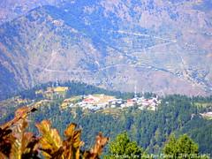 SGRN2015-09_107 (Ayesha Khalid Khan) Tags: pakistan kaghanvalley shogran northernpakistan naturephotography travelphotography siripaye pakistantourism payeplateau