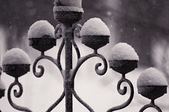 "Candelabra in the Snow • <a style=""font-size:0.8em;"" href=""http://www.flickr.com/photos/36031797@N08/24712281761/"" target=""_blank"">View on Flickr</a>"