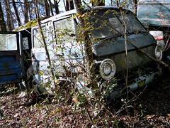 the Forgotten (Dave* Seven One) Tags: old trees rot classic abandoned broken rotting forest vintage dead woods junk rust decay rusty forgotten dodge junkyard 1960s van decaying a100 rotted oldcarporn