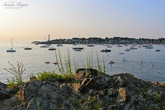 Marblehead Harbor, Fort Sewall-2 (River Bliss Photography) Tags: sea plants landscape harbor rocks marblehead northshore