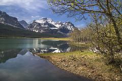 MG- Sherburne in Spring (GlacierNPS) Tags: glaciernationalpark nps montana nature manyglacier outdoors nationalparks spring