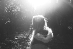 (nic lawrance) Tags: trees light people sun nature girl contrast woodland shadows shine bright path walk cotswolds gloucestershire corona figure