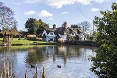 Badger Village (Mark Haddon Images) Tags: england pool shropshire cottage thatchroof badgervillage