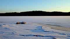 Winter blues (Joni Mansikka) Tags: trees winter sky ice nature woodland suomi finland landscape outdoor snowy stones shore paimio tamronspaf1750mmf28xrdiiildasphericalif