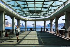 Hong Kong Harbour (Adrian Milne) Tags: hongkong harbour runner