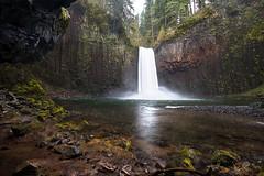Roaring Abiqua (stokes rx) Tags: oregon northwest waterfalls oregonwaterfalls abiqua