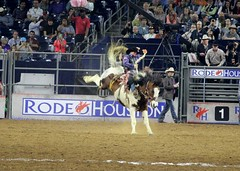 IMG_0018 (Heather6577) Tags: fun cowboy texas houston rodeo houstonlivestockshowandrodeo 2016 nrgstadium