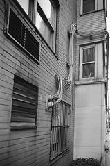 Conduits (Patrick Copley) Tags: leica nyc newyork detail building film rain architecture pipes gritty coop cabling leicam2 conduits trixpan whitebrickbuilding msoptical newyorkcoop bwfp perar28mmf4 msopticalperartriplet