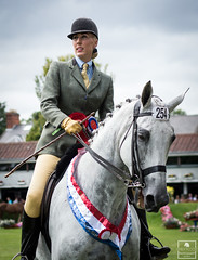 Mr Shakespeare and Lyndsey OBrien (Emily Flood) Tags: show horse grey hunter equestrian equine rds dublinhorseshow mrshakespeare workinghunter