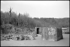Pillbox at Cayton (fawcetownsley) Tags: blackandwhite bw film beach 35mm lens diy yorkshire wideangle developer m42 schwarzweiss chemicals lightmeter praktica schacht fixer travenar technicalpan technidol 18min westoneuromaster 32asa commiecamera screwlens
