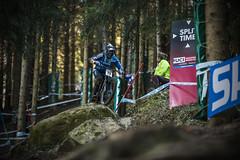 u6 (phunkt.com™) Tags: world mountain france cup bike race de hill keith down du valentine downhill dh mtb uni monde mode coupe lourdes ici 2016 vit phunkt phunktcom lourdesvtt