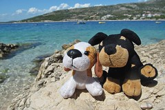 friends :) (green_lover) Tags: sea vacation dogs stone toys croatia