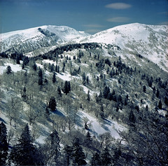 Mt.Ohginuma (threepinner) Tags: snow ski japan spring hokkaido skiing negative   expired biei hokkaidou  selfdeveloped 75mm  iso160  northernjapan  f34  ebcfujinon mountainsnaps  mtmaruyama taisetsunationalpark fujiholga120s mtohginuma