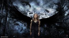 Chlo Moretz - Dark Angel (oskar_umbrellas) Tags: angel moretz chloemoretz chlomoretz chloegracemoretz chloegmoretz chlogracemoretz