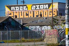 ADZE ZION 2MUCH PDOGS (SPEAR1X) Tags: california ca street wall graffiti losangeles cest socal zion spraypaint pdogs reck adze zeal 2much pdog