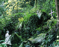 The Grotto (josuerodriguez1992) Tags: 120 mamiya mediumformat portland 120film grotto portra rz67 portra400 110mm