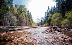 Yosemite Merced River (JarrodLopiccolo) Tags: california spring yosemite yosemitenationalpark mercedriver yosemitenation