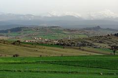 Ilgaz, Kastamonu (Senol Demir) Tags: mountain green turkey landscape ngc trkiye da manzara yeil kastamonu ilgaz concordians ilgazda ilgazdagi