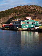 Brewing Something Good (Tk_White) Tags: ocean building newfoundland lumix dock harbour panasonic brewery quid 456 vidi gx8 35100mm