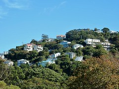 Suburb with a View (mikecogh) Tags: houses bush view wellington suburbs hillside slopes