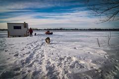 Frozen river (vinnie saxon) Tags: winter people dog pets snow cold ice river frozen cabin nikon tokina1224 bluesky nikoniste d5300