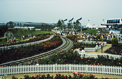 32-08-86 34 - Rose Garden (1)