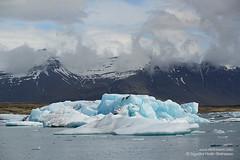 shs_n8_044764 (Stefnisson) Tags: ice berg landscape iceland glacier iceberg gletscher glaciar sland icebergs jokulsarlon breen jkulsrln ghiacciaio jaki vatnajkull jkull jakar s gletsjer ln  glacir sjaki sjakar stefnisson