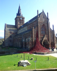 Weeping Window - St Magnus Cathedral (orquil) Tags: uk greatbritain red sunshine outside islands scotland spring interesting orkney exterior view cathedral display anniversary entrance sailors sunny front special poppy poppies april killed british elevated remembrance cascade firstworldwar westend kirkwall symbolic inmemoriam cascading memorable stmagnus royalnavy hundredth wewillrememberthem 100thanniversary orcades battleofjutland kirkgreen weepingwindow royalnavygrandfleet
