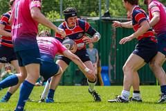 20160430-IMG_1929.jpg (Rugby Club Innsbruck) Tags: sport hall rugby innsbruck rci rugbyunion stadeviennois rugbyclubinnsbruck trojer jtrojercom stadewien