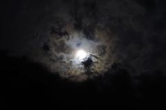 F._IMG8638 (Micha Olesiski) Tags: sun clouds poland polska soce chmury