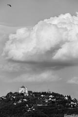 La rondine, la nuvola e la basilica (Riccardo Mollo) Tags: sky cloud torino nuvola basilica hill cielo swallow turin collina superga rondine basilicadisuperga basilicaofsuperga