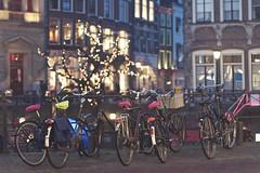 Bikes in the city (sonia.sanre) Tags: netherlands bike night lights luces noche utrecht bokeh bici