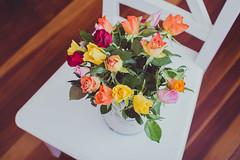 Un ramito de rosas (Itziar Aio) Tags: color silla rosas