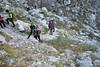 Osserviamo i Camosci sulle rocce nelle Gole di Fara San Martino (CH) - Majella - Abruzzo - Italy