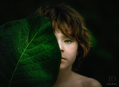 Emerging ({jessica drossin}) Tags: life boy plant green nature hair leaf eyes child forrest freckles shoulder jessicadrossin wwwjessicadrossincom jdbeautifulworldcollection
