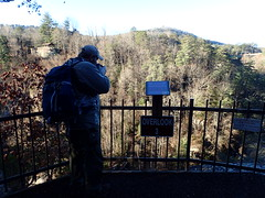Tallulah Gorge State Park Rabun County Georgia (BenThomas1210) Tags: park county bridge trees 3 nature tallulah georgia photographer state gorge overlook rabun