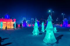 DSC09493.jpg (victoriaswebs) Tags: winter kazakhstan astana
