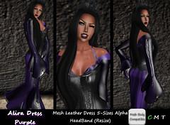CDAliraDressMeshLeatherPurple (*CD* Chanla Design) Tags: leather clothing dress mesh cd gothic kleidung vampir kleid meshbody