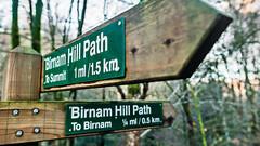 INSTRUCTION! (grahamrobb888) Tags: woods signpost footpath birnam on1pics