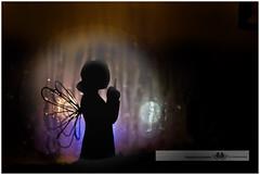 JANUARY 2016  NM1_7145_006967 (Nick and Karen Munroe) Tags: nightphotography trees windows winter lake ontario canada reflection rain silhouette angel night reflections landscape photography nikon photographer nick munroe karen professional nighttime rainy angels lakeshore raindrops designs glowing nightshots figurine f28 oakville willowtree 2470 1424 munroephotography munroedesignsphotography munroedesigns karenick karenick23 nickmunroe nikond750 nickandkarenmunroe karenandnickmunroe karenmunroe
