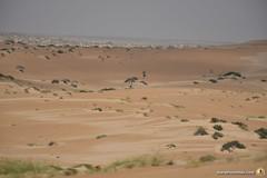 3-Oman-Desert-Marathon-Day-6_7161