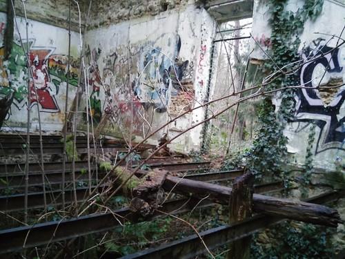 bois Livry-sur-Seine