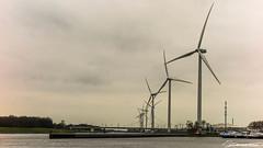Windmolens Europaweg (dorsman1970) Tags: winter water rotterdam nederland lucht landschap windmolen rivier botlek