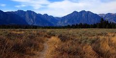 Northern Grand Teton Range - Grand Teton National Park, Wyoming (danjdavis) Tags: mountains nationalpark rockymountains wyoming grandtetons grandtetonnationalpark grandtetonrange